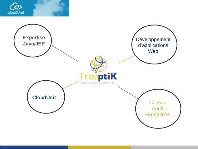 Expertise Java/JEE Développement d'applications Web CloudUnit Conseil Audit Formations
