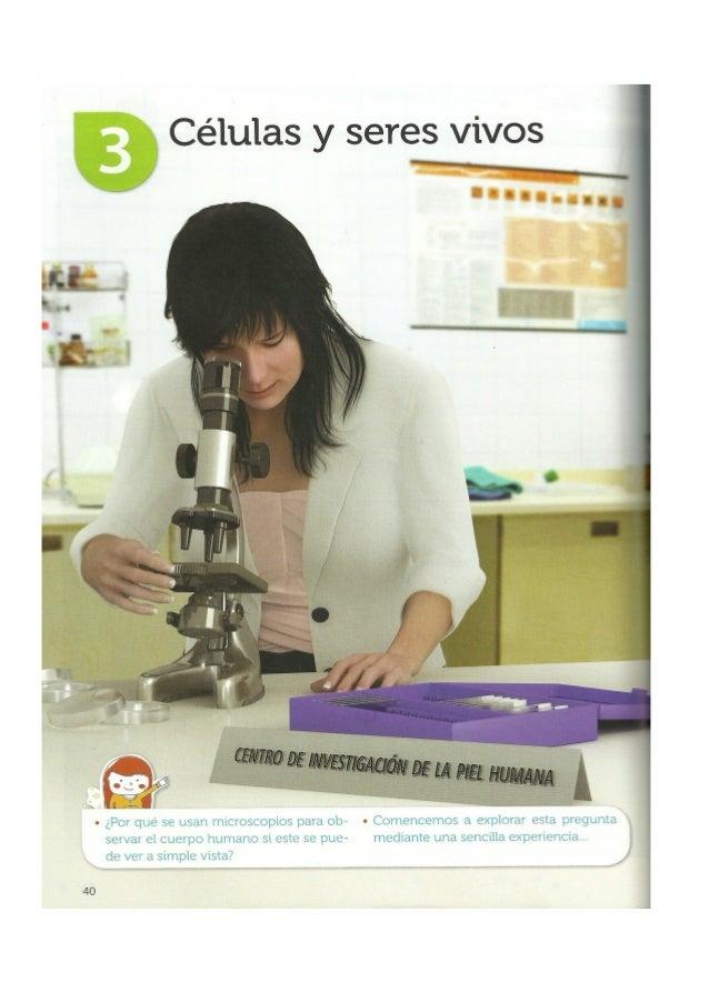 BibliografíaCiencias Naturales 6. Serie Conecta. Ediciones SM, 2013.