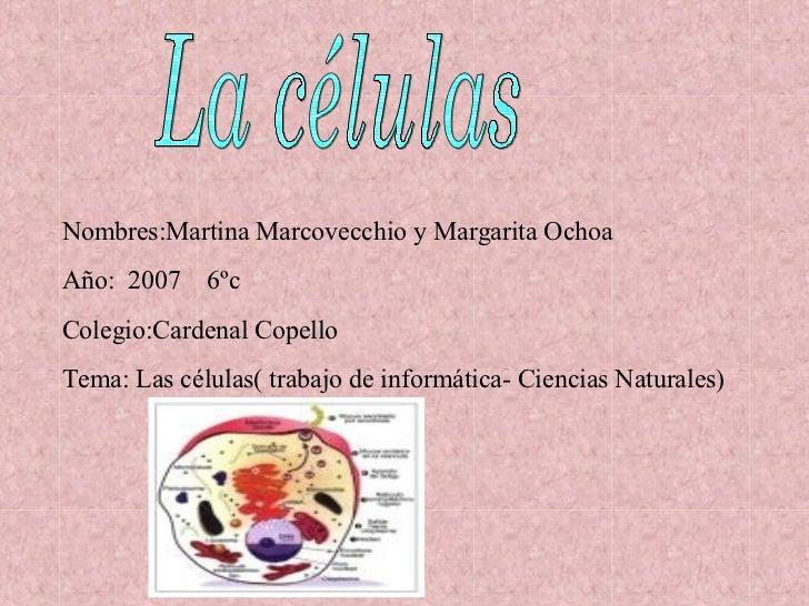 La células Nombres:Martina Marcovecchio y Margarita Ochoa Año:  2007  6ºc Colegio:Cardenal Copello Tema: Las células( trab...