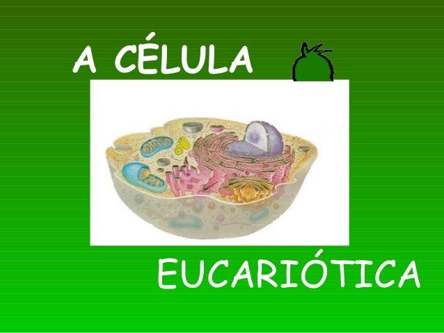 A CÉLULAEUCARIÓTICA