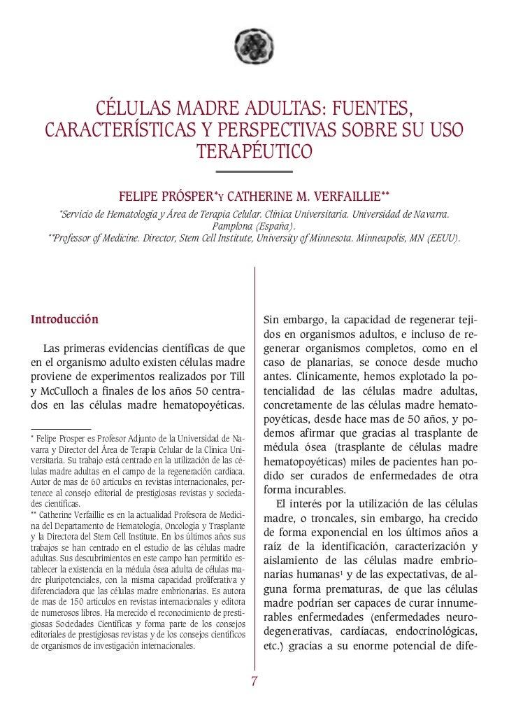 CÉLULAS MADRE ADULTAS: FUENTES,    CARACTERÍSTICAS Y PERSPECTIVAS SOBRE SU USO                   TERAPÉUTICO              ...