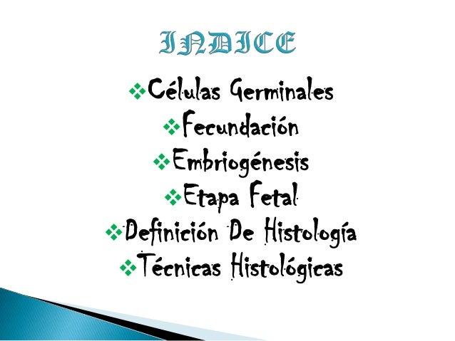 Células germinales, fecundación, embriogénesis, etapa fetal, histología, técnicas histológicas