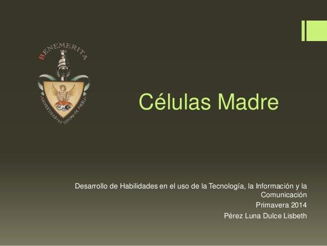Células Madre Desarrollo de Habilidades en el uso de la Tecnología, la Información y la Comunicación Primavera 2014 Pérez ...