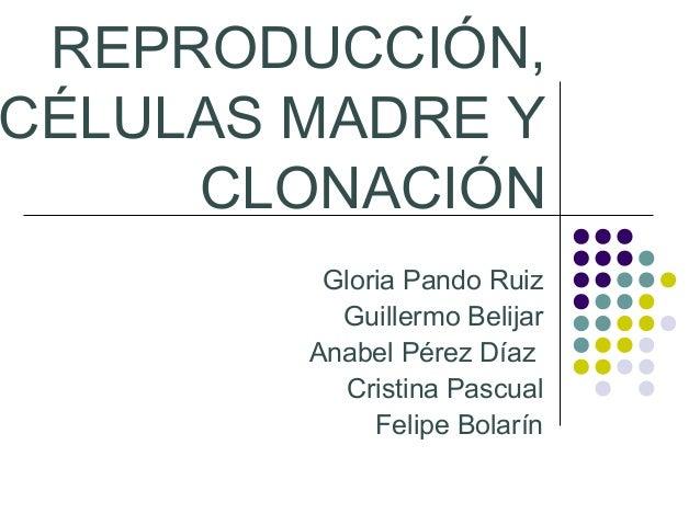 REPRODUCCIÓN, CÉLULAS MADRE Y CLONACIÓN Gloria Pando Ruiz Guillermo Belijar Anabel Pérez Díaz Cristina Pascual Felipe Bola...