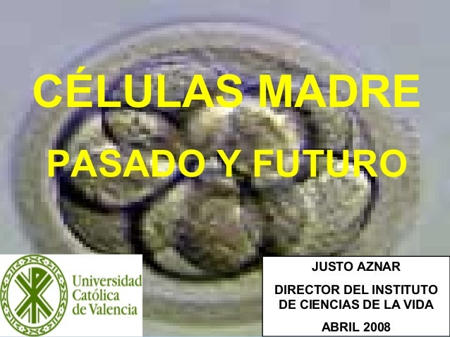 1 CÉLULAS MADRE PASADO Y FUTURO JUSTO AZNAR DIRECTOR DEL INSTITUTO DE CIENCIAS DE LA VIDA ABRIL 2008