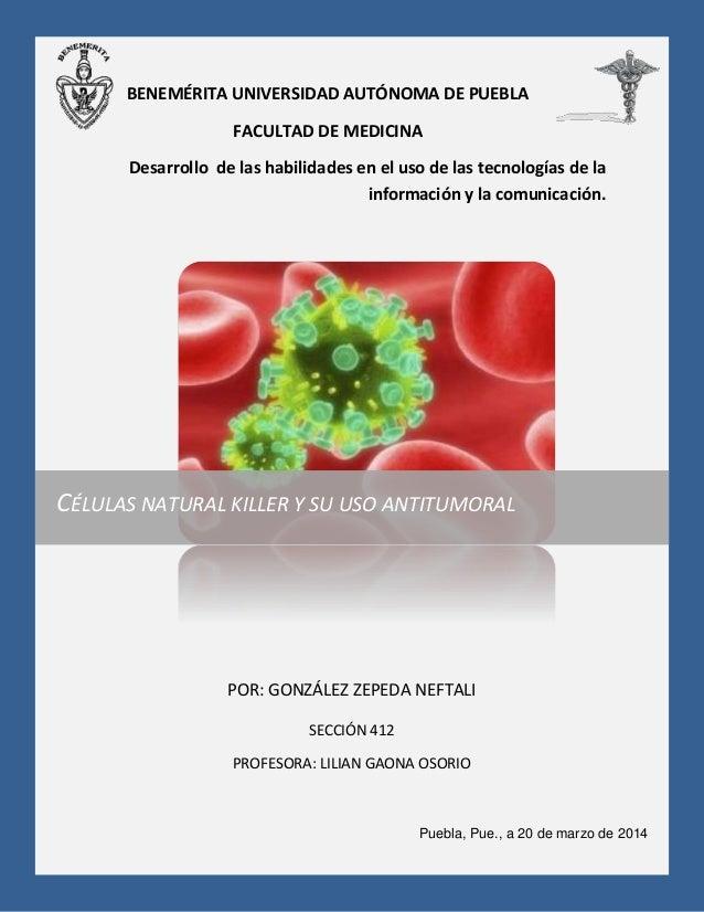 Células natural killer y su uso antitumoral