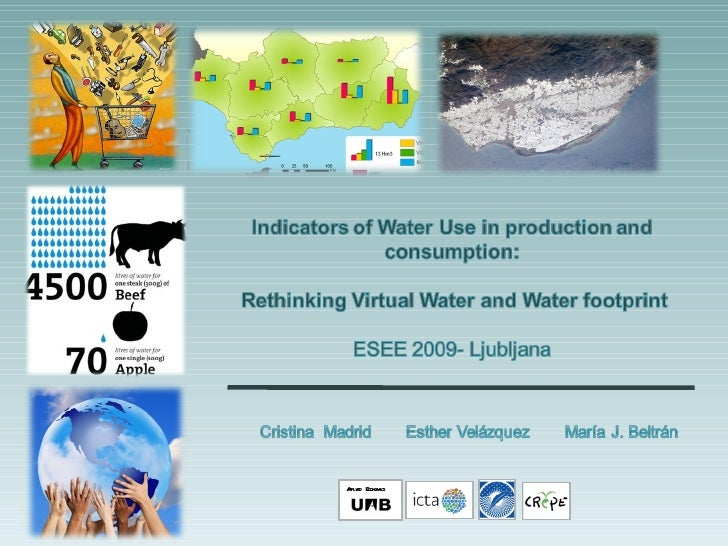Virtual Water and Water Footprint
