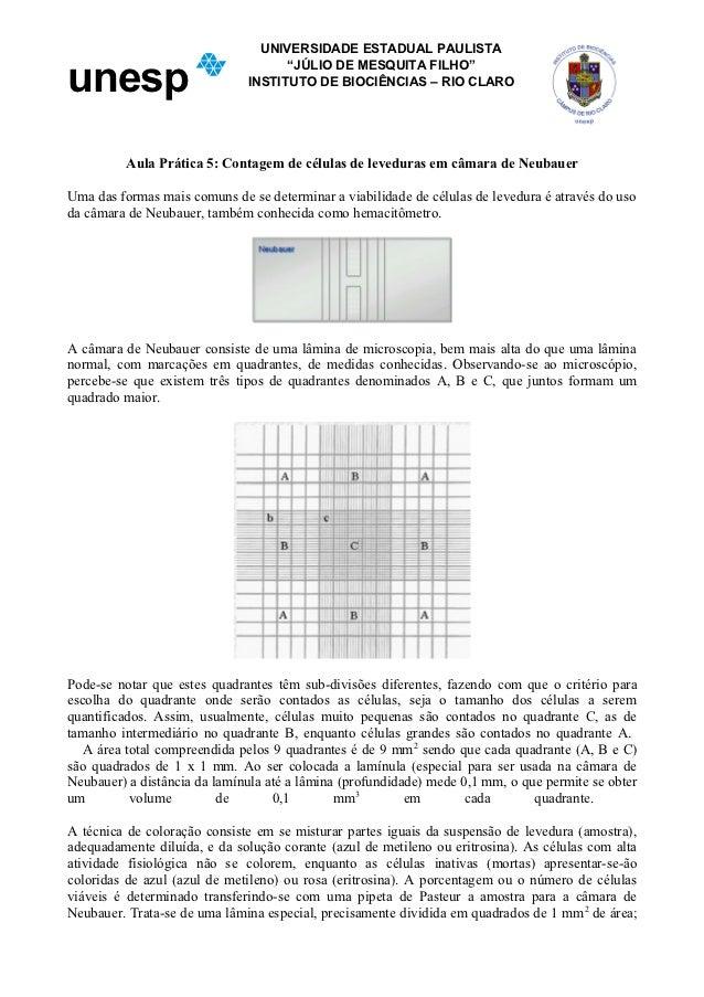 """UNIVERSIDADE ESTADUAL PAULISTAunesp                                    """"JÚLIO DE MESQUITA FILHO""""                          ..."""