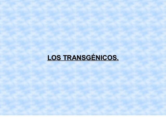 LOS TRANSGÉNICOS.