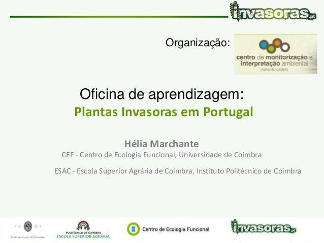 Plantas Invasoras em Portugal | 30 Maio | CMIA Viana do Castelo www.invasoras.uc.pt 1/79 Oficina de aprendizagem: Plantas ...