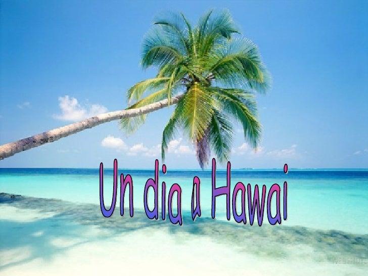 Un dia a Hawai