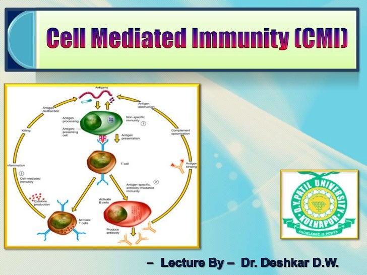 Cmi Lecture 17 2
