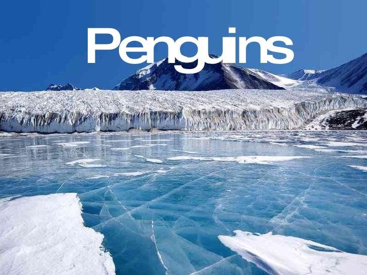 C:\Mis Documentos\Marina\Col·Legi\Engllish\Penguins