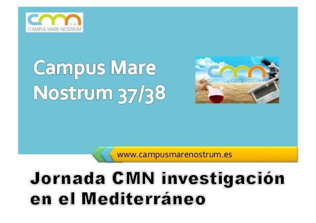 LOGO       www.campusmarenostrum.es