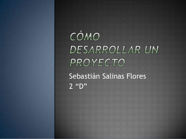 "Sebastián Salinas Flores2 ""D"""