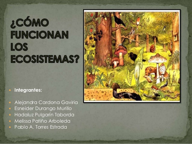  Integrantes: Alejandra Cardona Gaviria Esneider Durango Murillo Hadaluz Pulgarín Taborda Melissa Patiño Arboleda Pa...