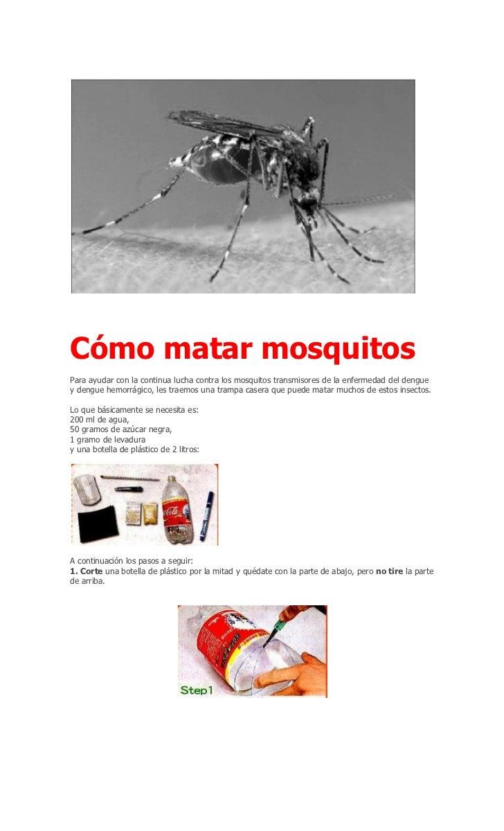 Cómo matar mosquitosPara ayudar con la continua lucha contra los mosquitos transmisores de la enfermedad del denguey dengu...