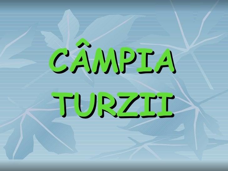 C ÂMPIA TURZII