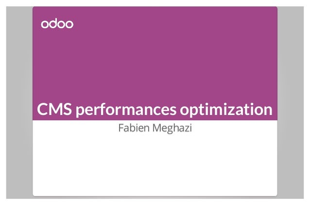 CMS performances optimization Fabien Meghazi