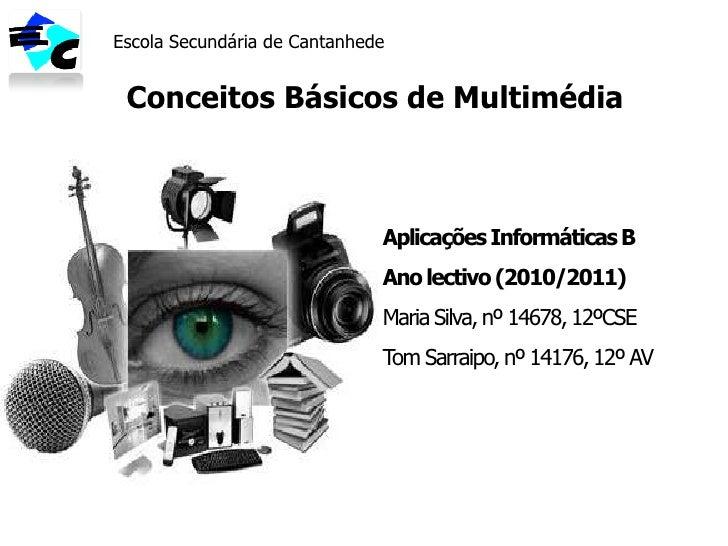 Escola Secundária de Cantanhede<br />Conceitos Básicos de Multimédia<br />Aplicações Informáticas B<br />Ano lectivo (2010...
