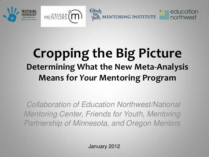 Cropping the Big PictureDetermining What the New Meta-Analysis   Means for Your Mentoring Program Collaboration of Educati...