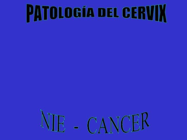 PATOLOGÍA DEL CERVIX NIE  -  CANCER