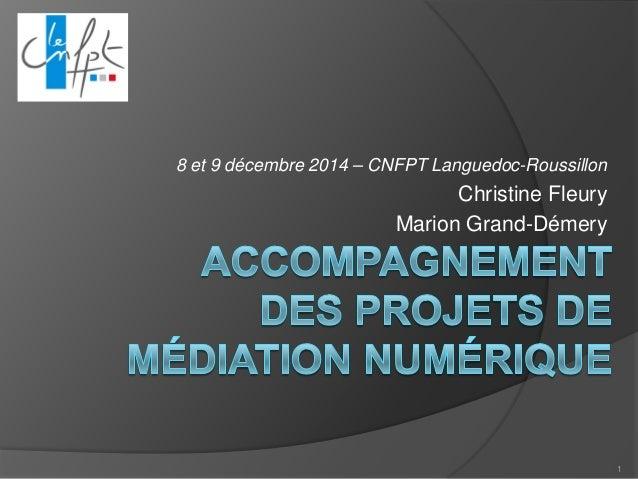 8 et 9 décembre 2014 – CNFPT Languedoc-Roussillon  Christine Fleury  Marion Grand-Démery  1