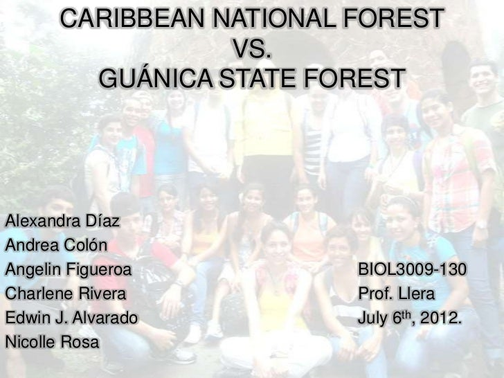 Caribbean National Forest VS Guanica State Forest