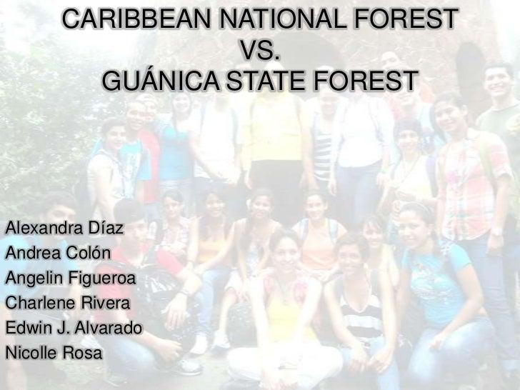CARIBBEAN NATIONAL FOREST                 VS.        GUÁNICA STATE FORESTAlexandra DíazAndrea ColónAngelin FigueroaCharlen...