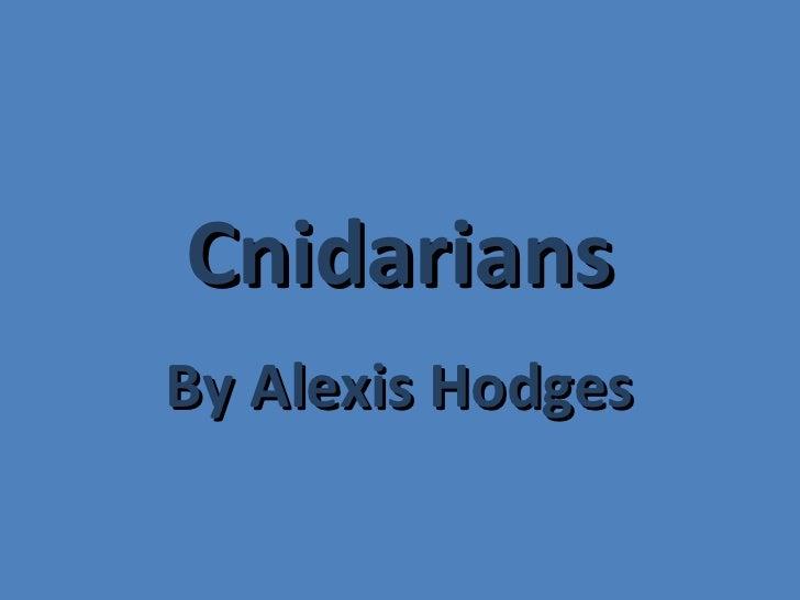 Cnidarians Alexis