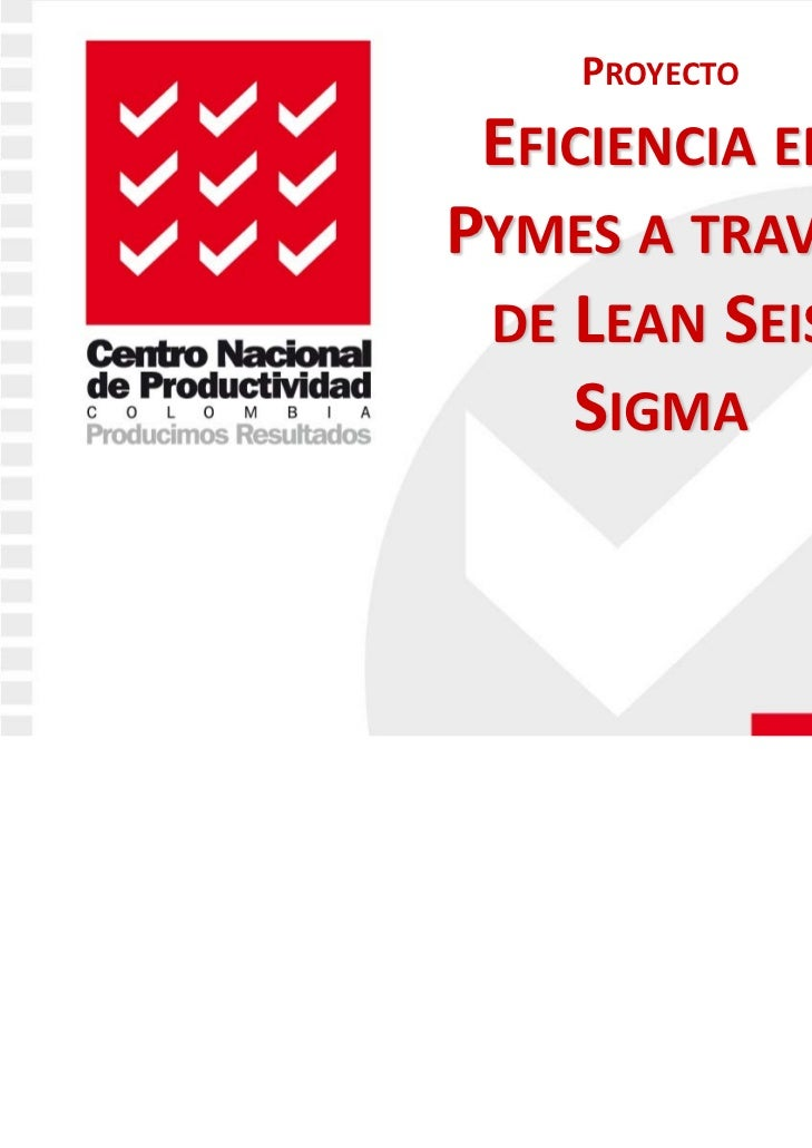 """Proyecto """"Eficiencia en Pymes a través de Lean Seis Sigma""""  - CNP"""