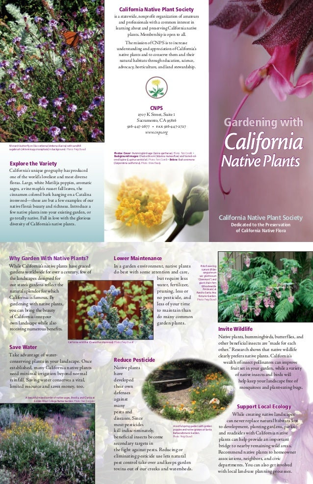 Gardening with Native Plants - California Native Plant Society