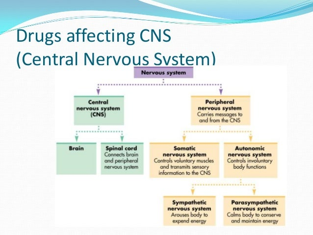 Drugs affecting CNS (Central Nervous System)