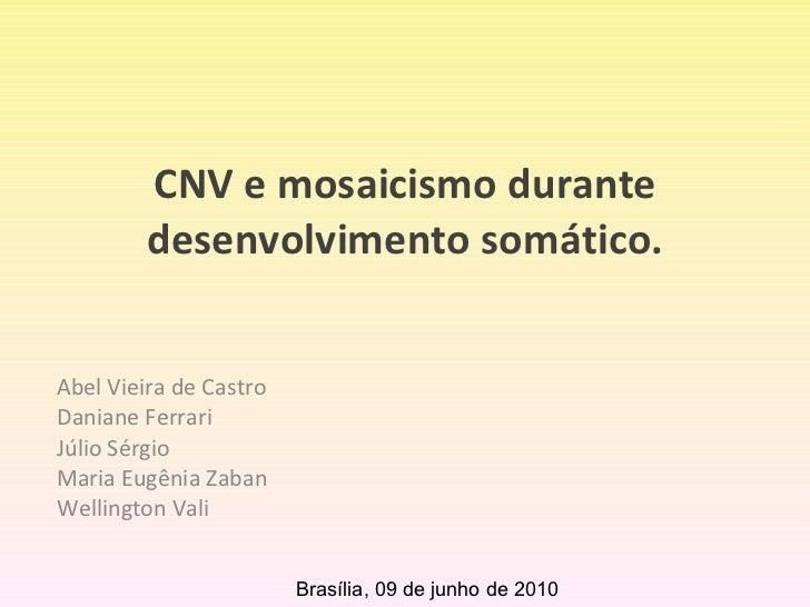 CNV e mosaicismo durante desenvolvimento somático. Abel Vieira de Castro Daniane Ferrari Júlio Sérgio Maria Eugênia Zaban ...