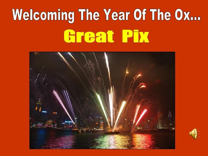 Welcoming The Year Of The Ox...Great Pix