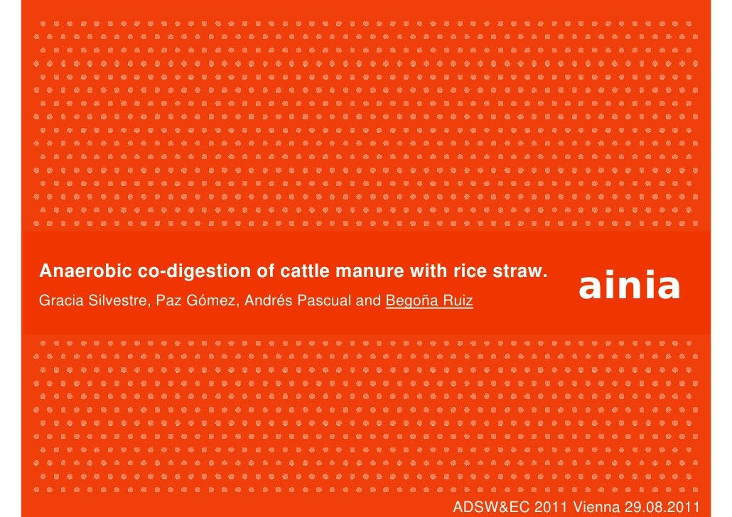 ainiaAnaerobic co-digestion of cattle manure with rice straw.Gracia Silvestre, Paz Gómez, Andrés Pascual and Begoña Ruiz  ...