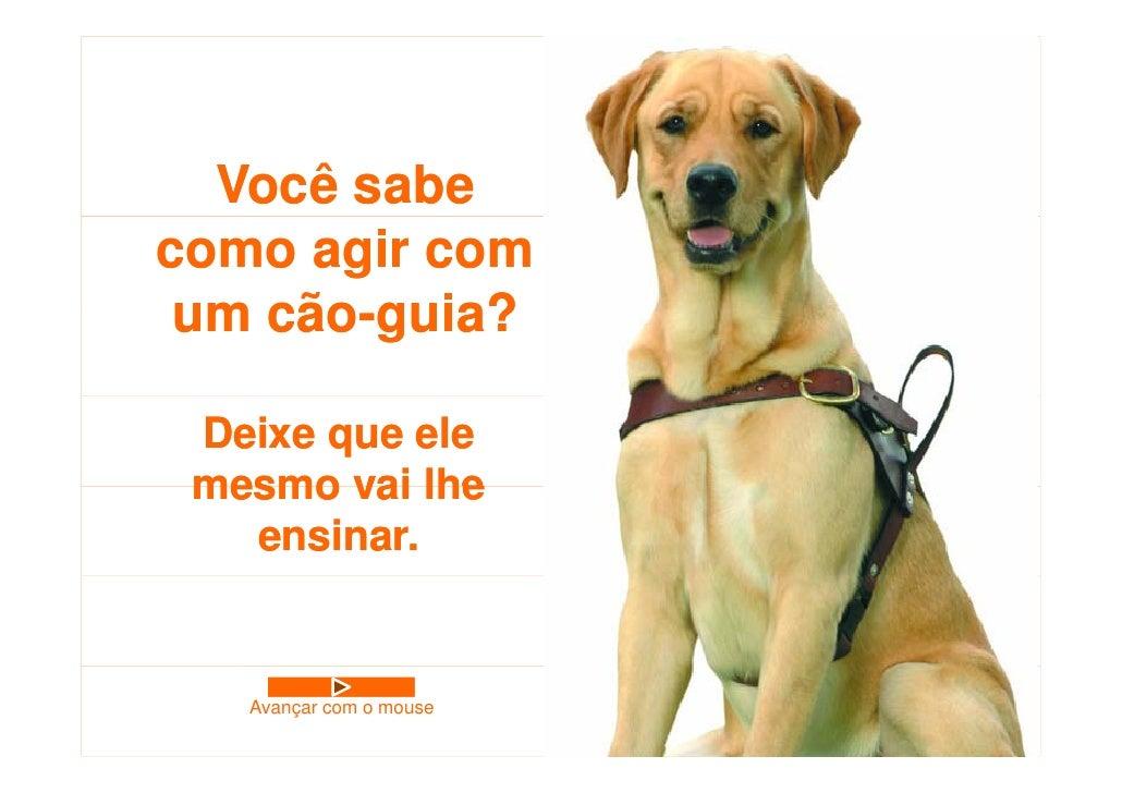 Você sabe como agir com  um cão-guia?     cão guia?   Deixe que ele  mesmo vai lhe    ensinar.      Avançar com o mouse