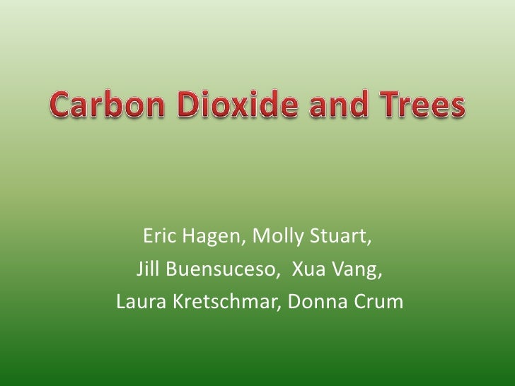 Eric Hagen, Molly Stuart,<br /> Jill Buensuceso, XuaVang,<br /> Laura Kretschmar, Donna Crum<br />Carbon Dioxide and Trees...