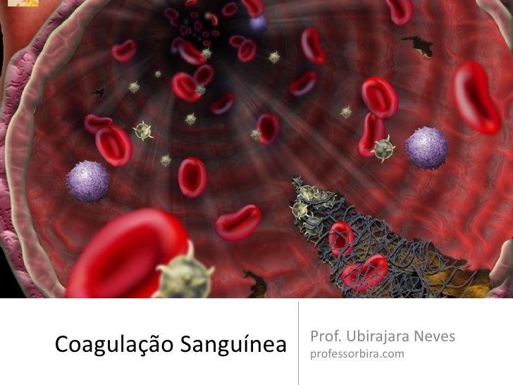 Prof. Ubirajara NevesCoagulação Sanguínea   professorbira.com