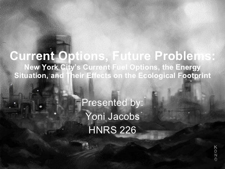 Current Options, Future Problems: New York City's Current Fuel Options, the Energy Situation, and Their Effects on the Eco...