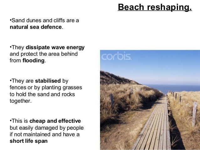 Dune Fencing Advantages And Disadvantages Coastal