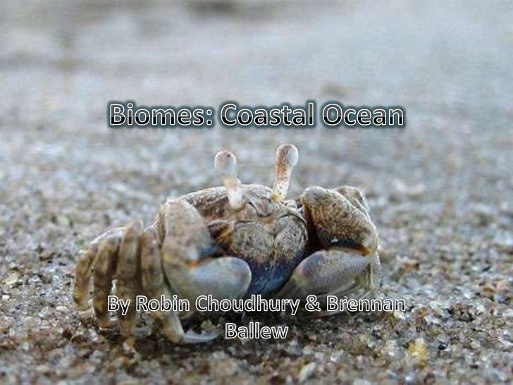 Biomes: Coastal Ocean<br />By Robin Choudhury & Brennan Ballew<br />