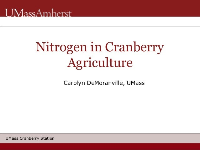 Nitrogen in Cranberry Agriculture