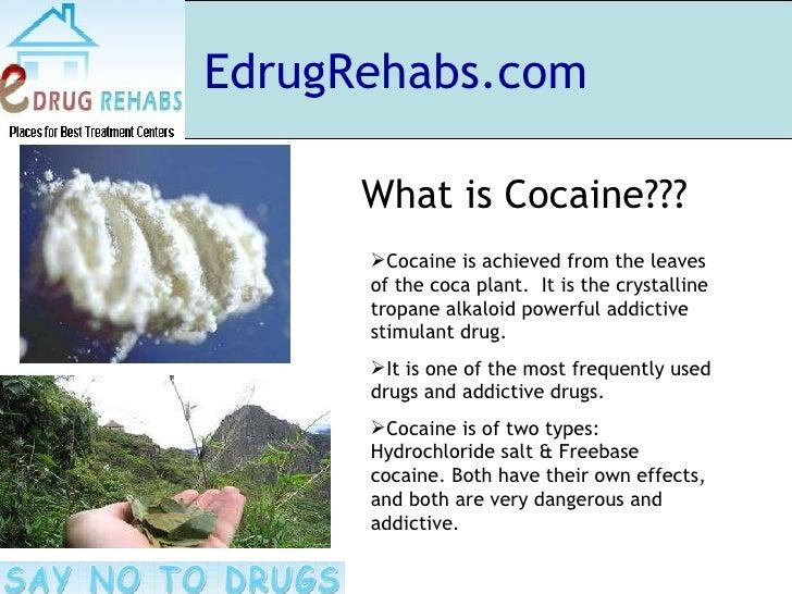 the characteristics of cocaine a powerful stimulant