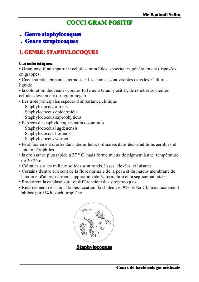MrMrMrMr BoutouilBoutouilBoutouilBoutouil SalimSalimSalimSalim CoursCoursCoursCours dededede bactbactbactbactéééériologier...