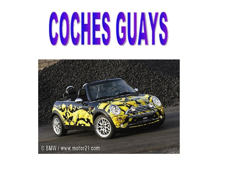 COCHES GUAYS