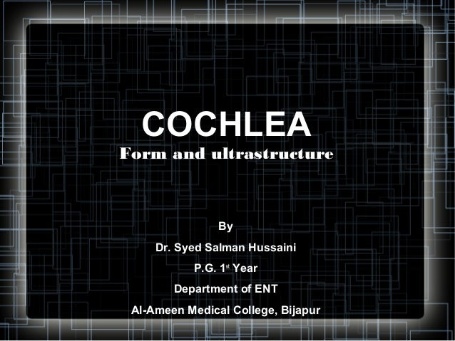 COCHLEAForm and ultrastructure                By     Dr. Syed Salman Hussaini           P.G. 1st Year        Department of...