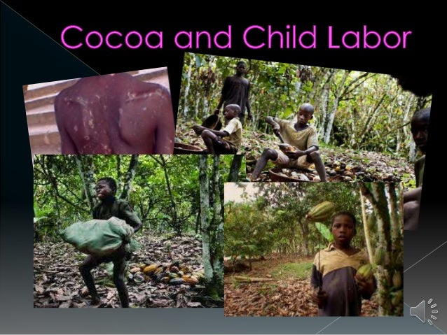 child labor in cocoa production and Cocoa beans from ghana and côte d'ivoire already are on the labor department's list of goods produced by child labor now the agriculture department should expedite the formulation of guidelines that will reduce child labor.