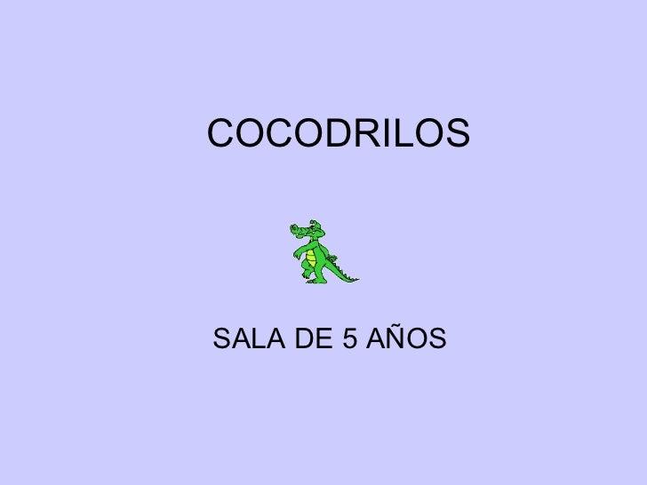 COCODRILOS SALA DE 5 AÑOS