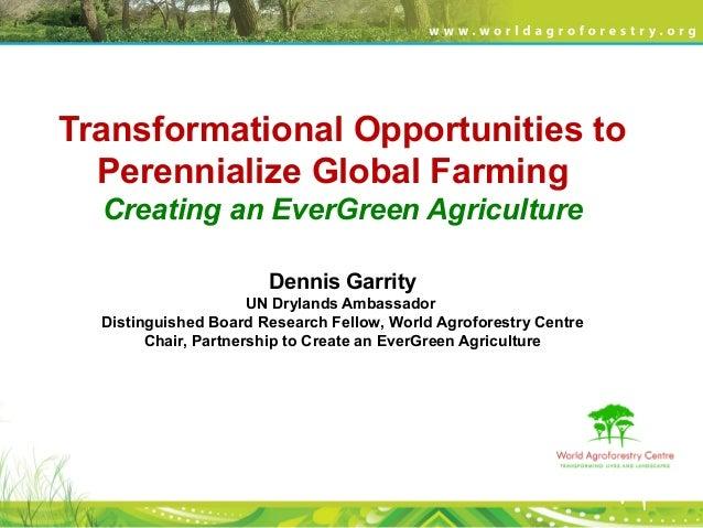 Transformational Opportunities to Perennialize Global Farming Creating an EverGreen Agriculture Dennis Garrity UN Drylands...